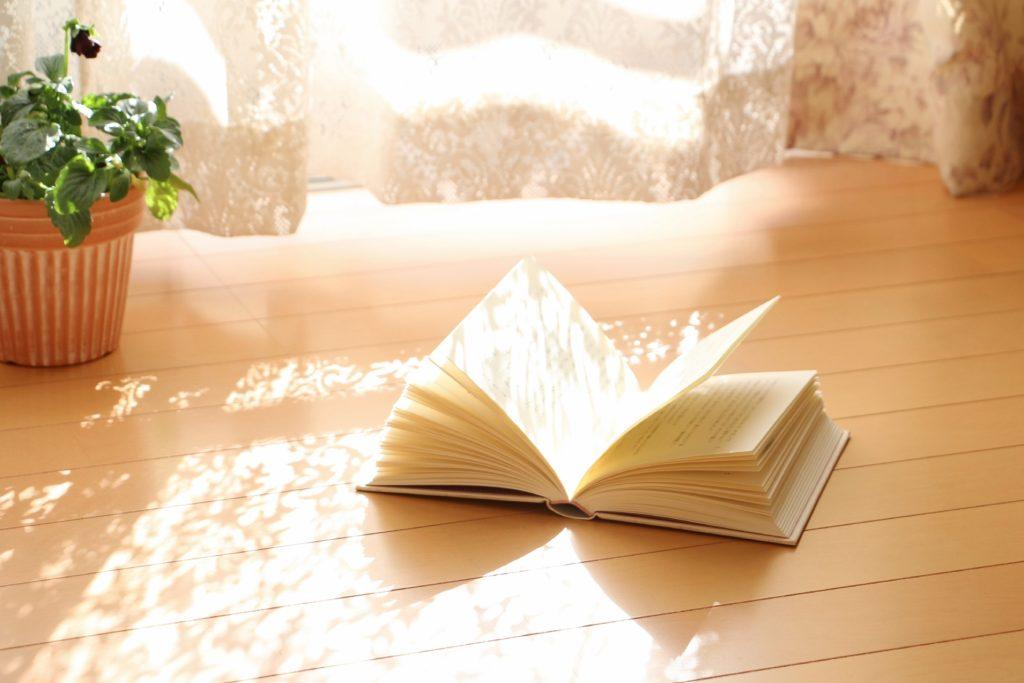 光あふれる部屋と観葉植物と本