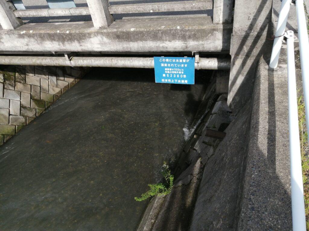 湯川を渡る橋の下に、通常は地中に埋まっている水道管がお目見え。
