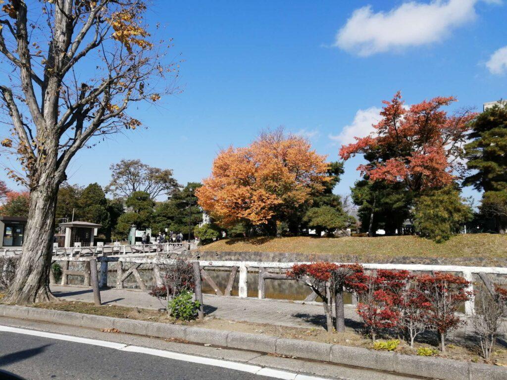 松本城の紅葉の様子。観光客も徐々に戻ってきました。