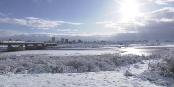 大雪の景色