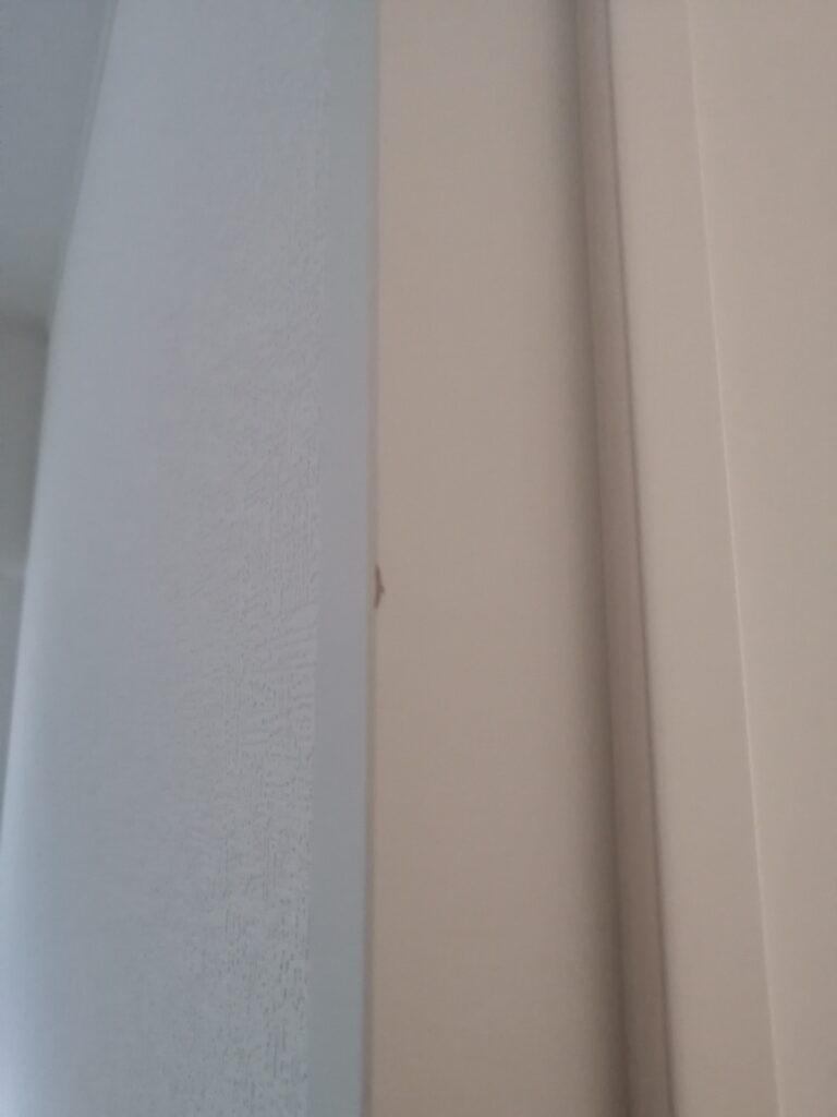 ドア(建具)のキズ、何か引っかけたのでしょうか