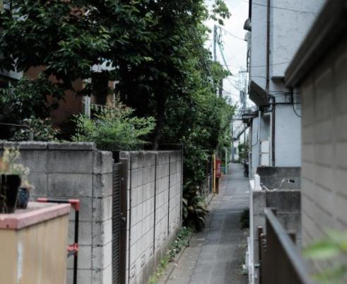 細い歩行者専用道路沿いの家並み