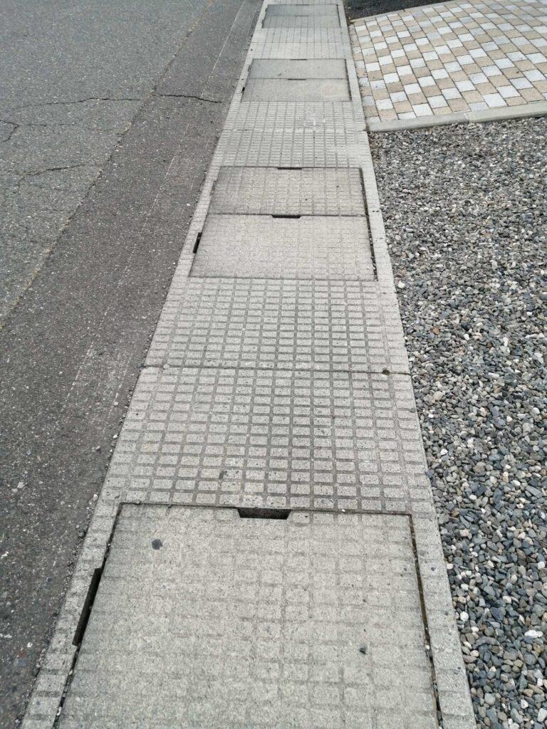 道路の側溝なのか水路なのか微妙なところ