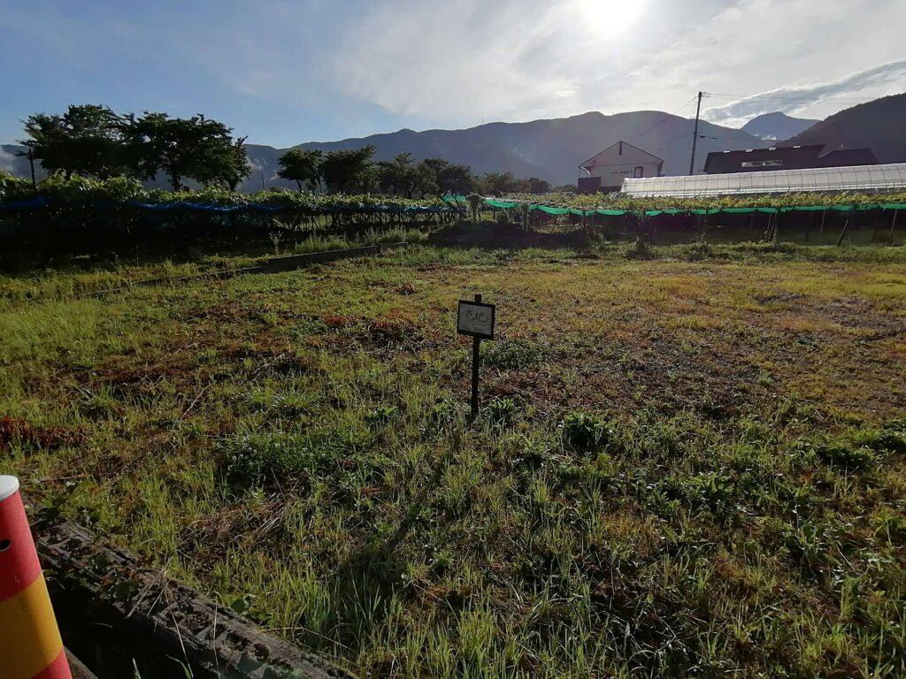 畑に囲まれた広々とした敷地