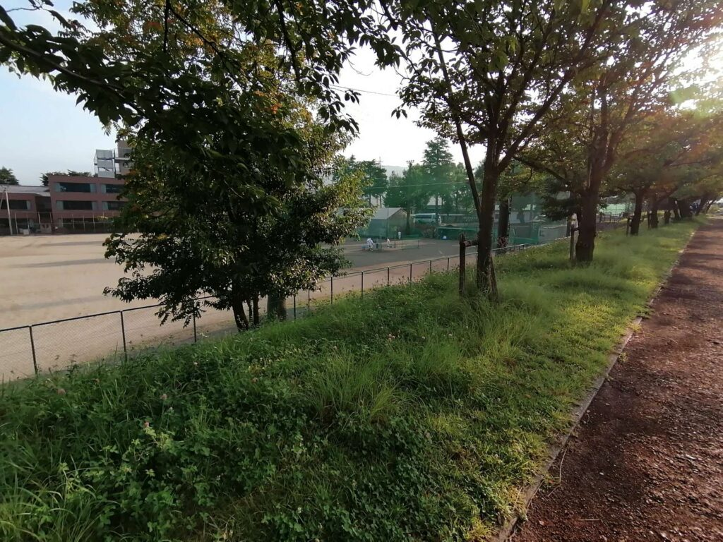 松商学園野球部が甲子園に向けて朝早くから練習していました